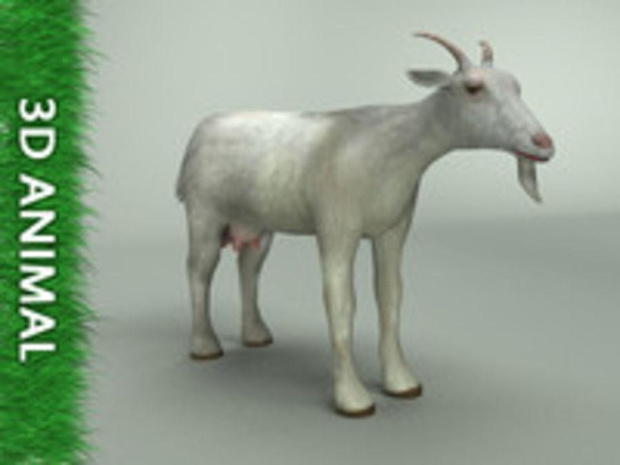 山羊3d模型 royalty-free 3d model - Preview no. 1