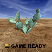 Low Poly - Cactus, beaver tail 3d model