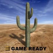 Low Poly - Cactus Saguaro 3d model