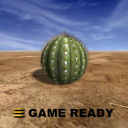 Low Poly - Cactus, round 3d model