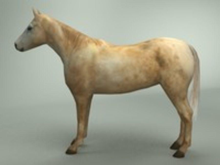Horse 3d model royalty-free 3d model - Preview no. 5