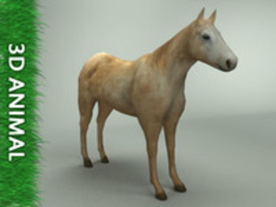 Horse 3d model royalty-free 3d model - Preview no. 1
