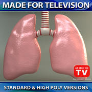 Lungs 01 VRay 3d model