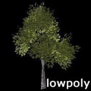 Birch tree # 1 3d model