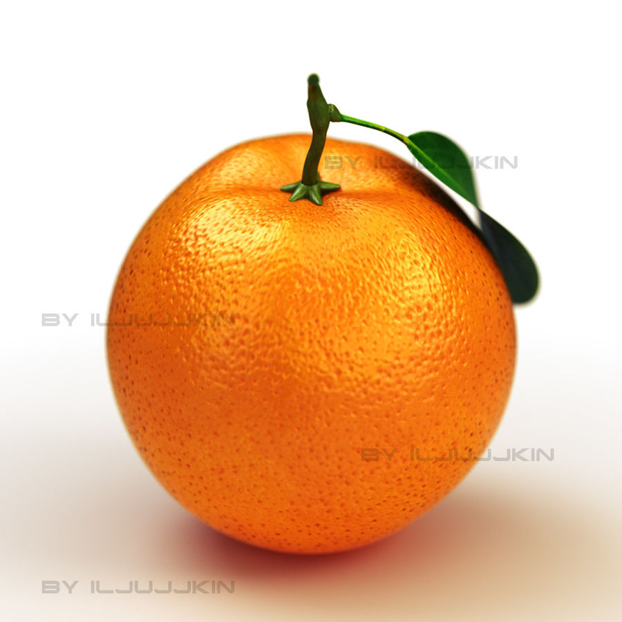 fruta laranja royalty-free 3d model - Preview no. 2