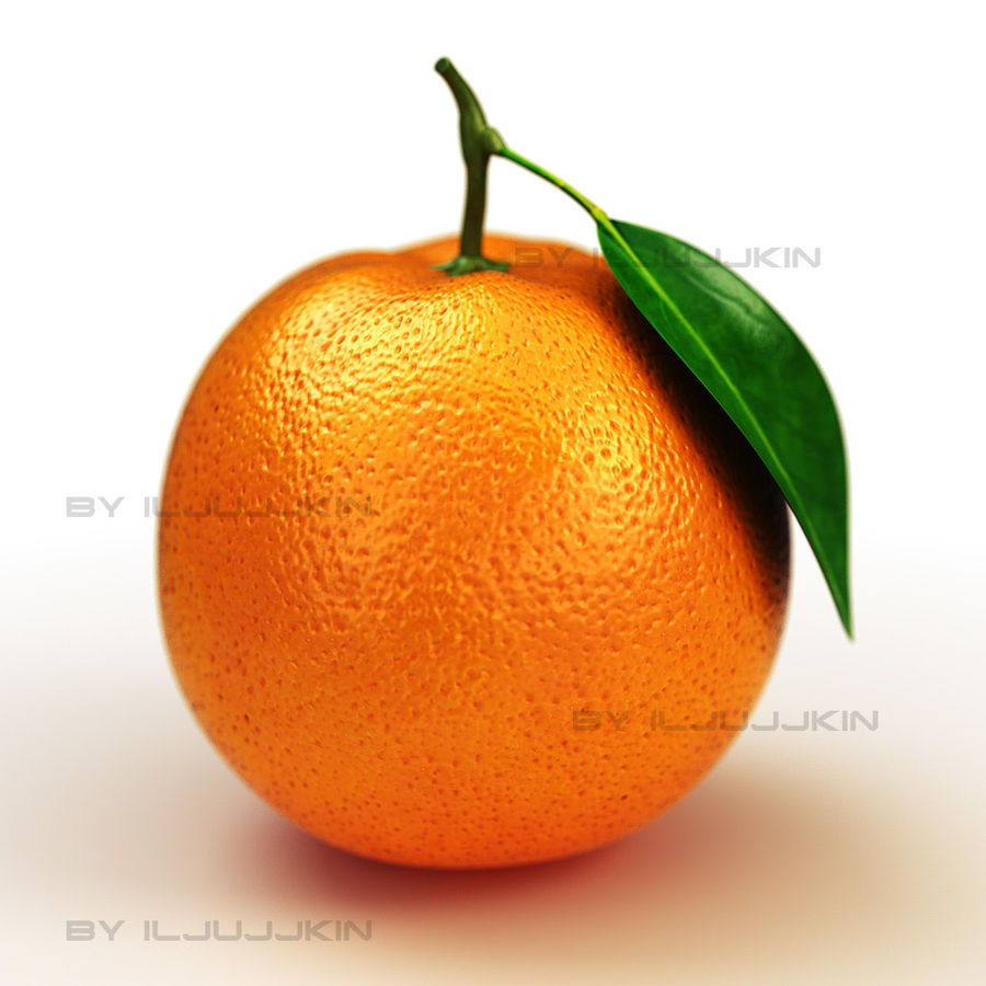 Orange fruit 3D Model  20 - .ma .fbx .obj .max .lwo .c4d .3ds - Free3D 7028ba268