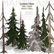 Cedar Tree Collection 3d model