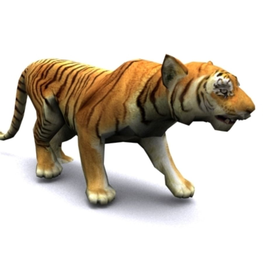 Tiger animated royalty-free 3d model - Preview no. 2