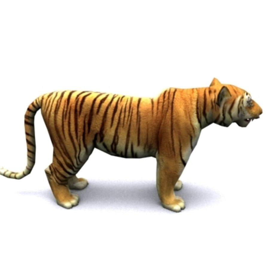 Tiger animated royalty-free 3d model - Preview no. 4