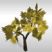 オークの木#2 3d model