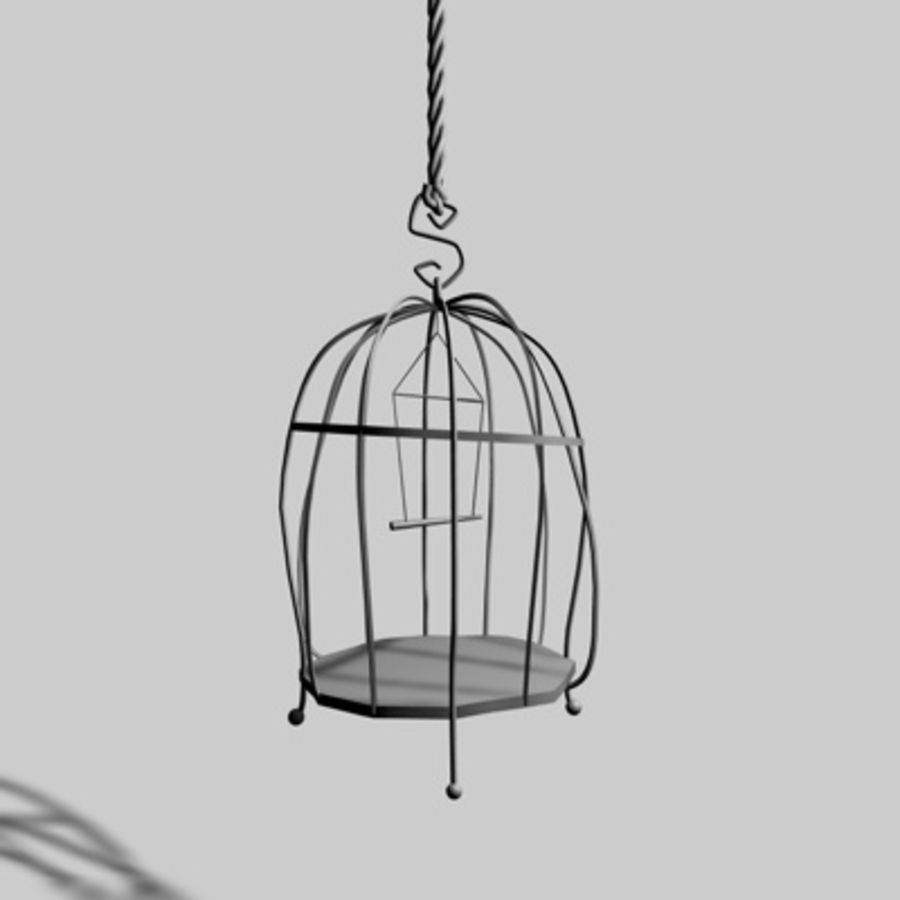 Bird Cages royalty-free 3d model - Preview no. 8