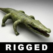 Odziany niski krokodyl 3d model