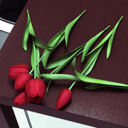 Mensonge de tulipes 3d model