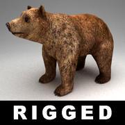 단단한 곰 인형 3d model