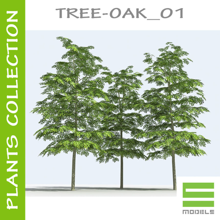 Arbre - OAK_01 royalty-free 3d model - Preview no. 1