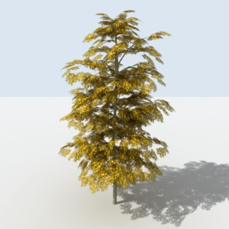 Arbre - OAK_01 royalty-free 3d model - Preview no. 10