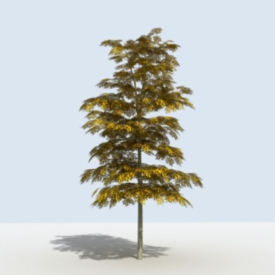 Arbre - OAK_01 royalty-free 3d model - Preview no. 9