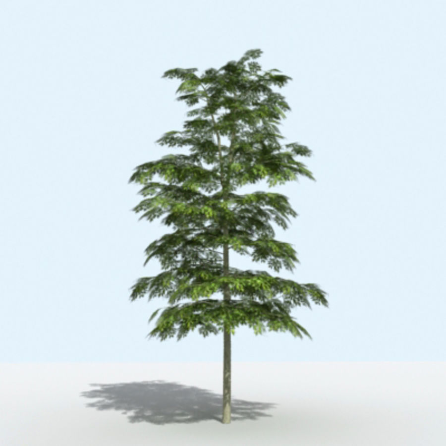 Arbre - OAK_01 royalty-free 3d model - Preview no. 3