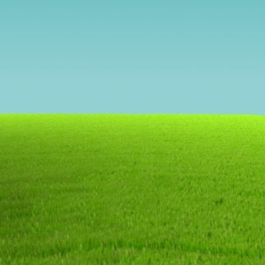 3D Grass royalty-free 3d model - Preview no. 2
