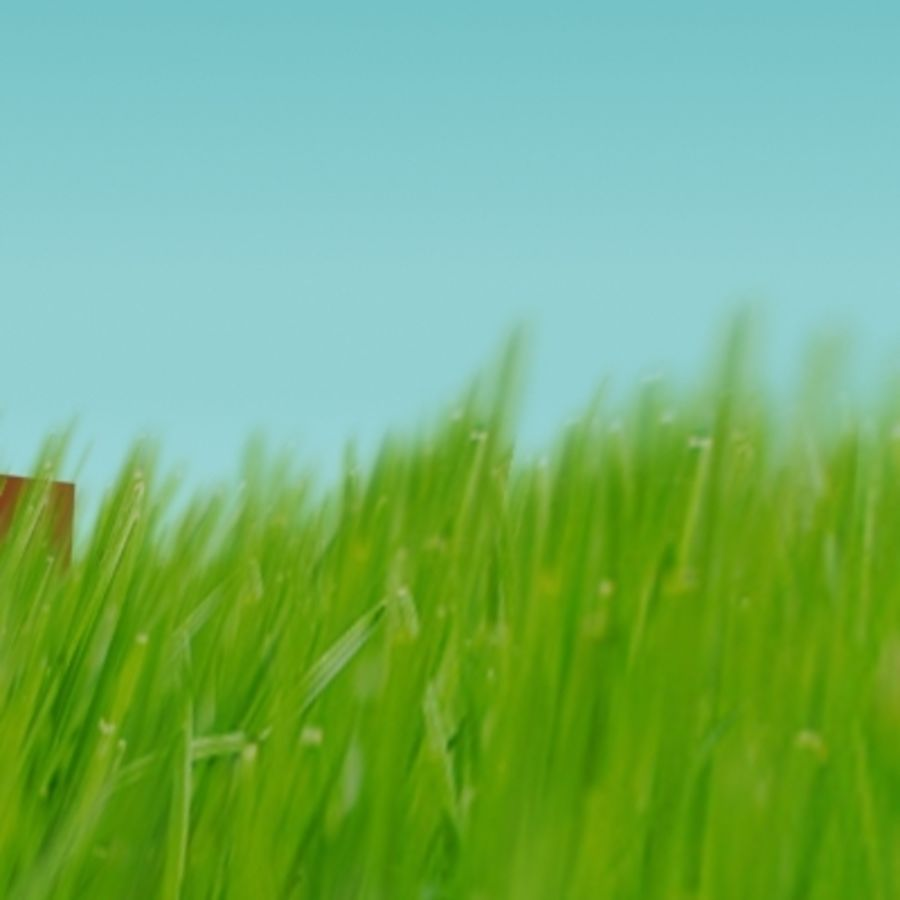 3D Grass royalty-free 3d model - Preview no. 12