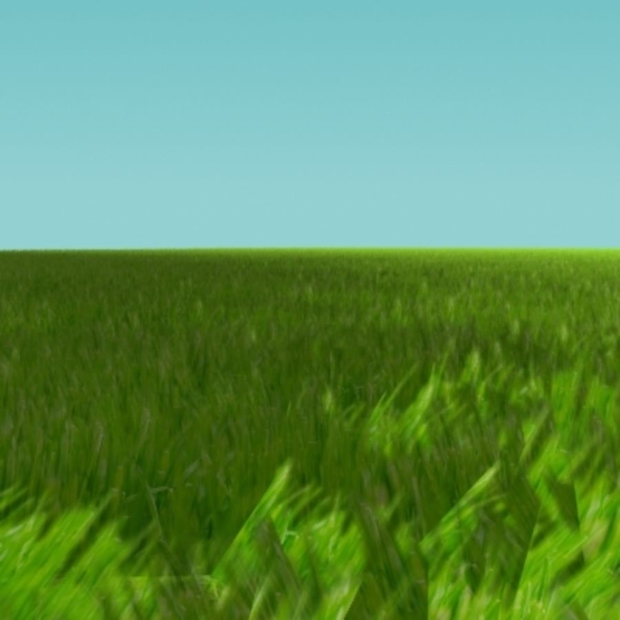 3D Grass royalty-free 3d model - Preview no. 5