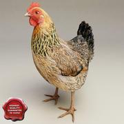 Pollo modelo 3d