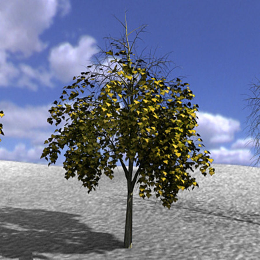 Tree, Trees, Arbol, Arboles royalty-free 3d model - Preview no. 4