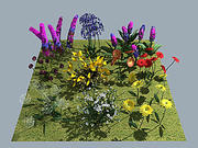 Flower Collection v1 - 10x models 3d model
