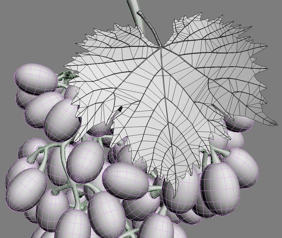 Grapes black royalty-free 3d model - Preview no. 7