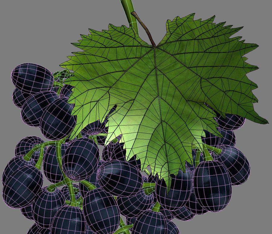 Grapes black royalty-free 3d model - Preview no. 5