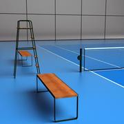 Campo da tennis in vinile 3d model