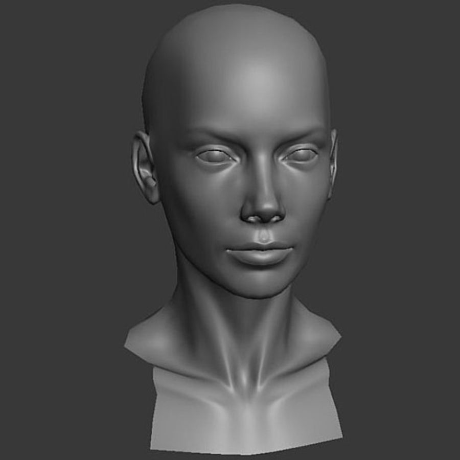 Head Female - Base Mesh royalty-free 3d model - Preview no. 1