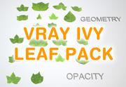 Ivy leaf pack 1 for Vray 3d model