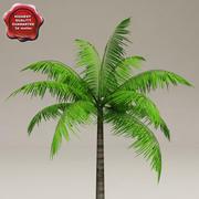 LowPoly Palm V1 3d model