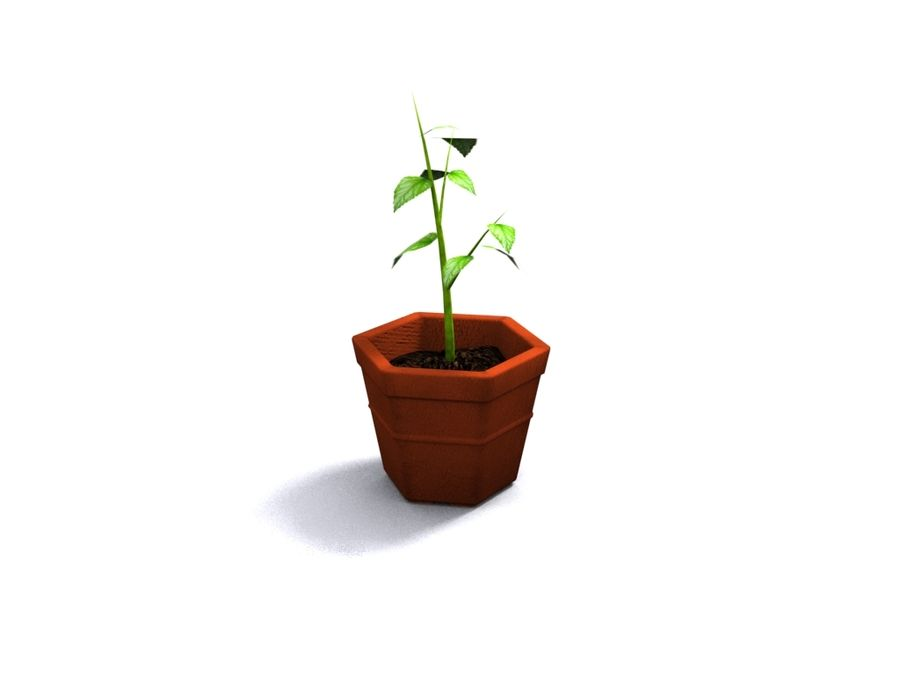 Plant Pot royalty-free 3d model - Preview no. 2