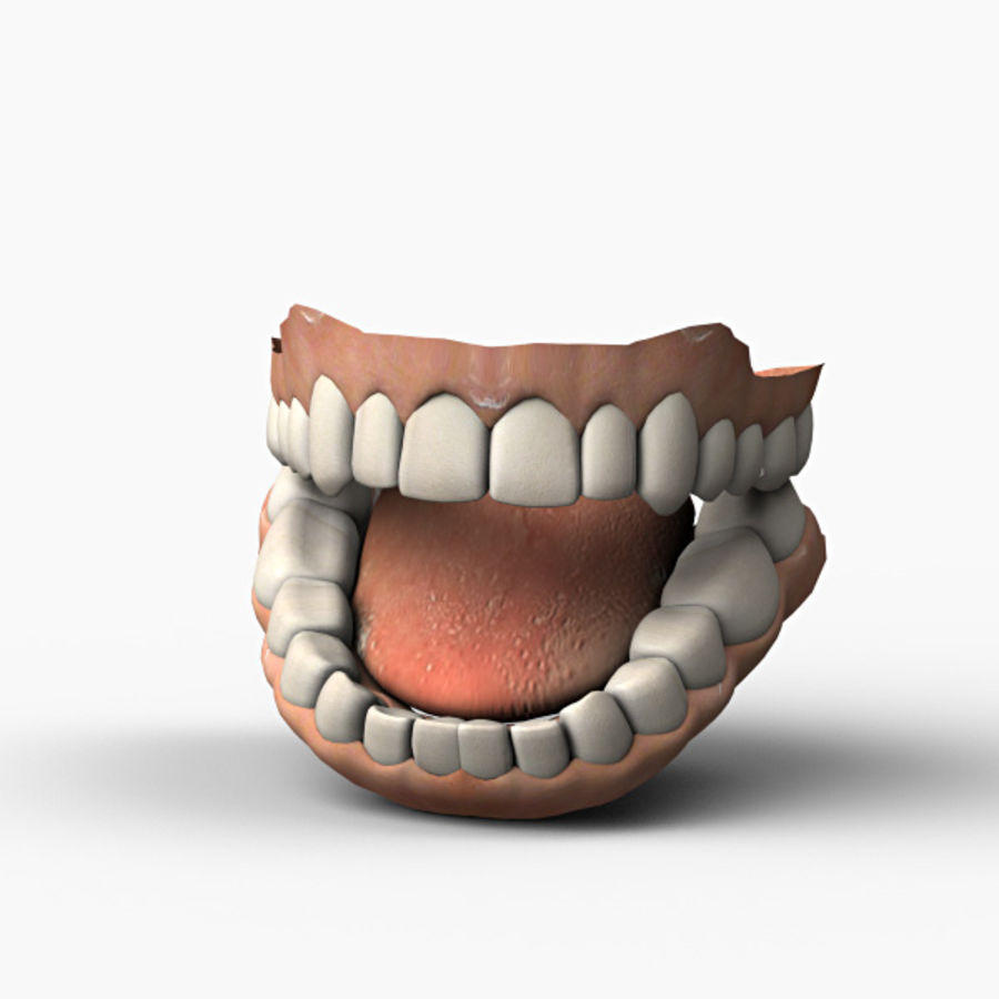 Teeth royalty-free 3d model - Preview no. 2