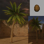 Palm Tree (low poly) 3d model