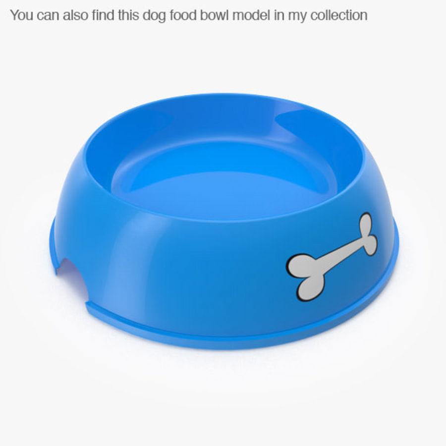 Tigela de Água para Comida de Cachorro (Baixa) royalty-free 3d model - Preview no. 3