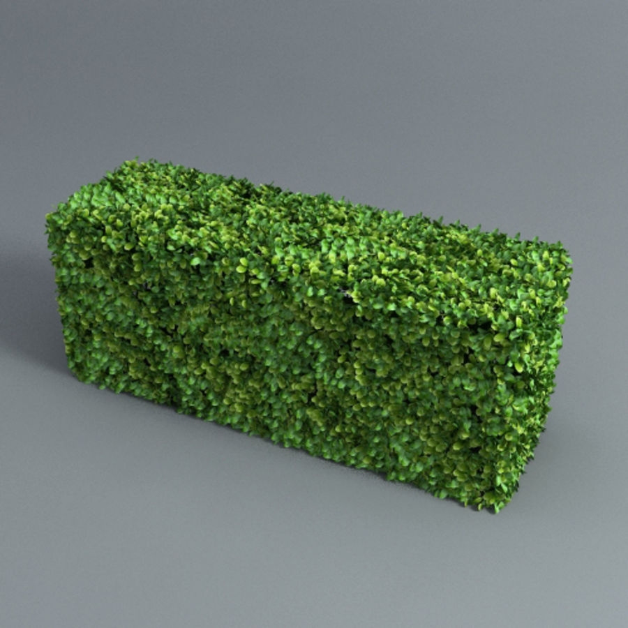 Hedge cubes royalty-free 3d model - Preview no. 2