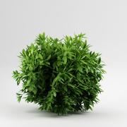 Bush_36 3d model