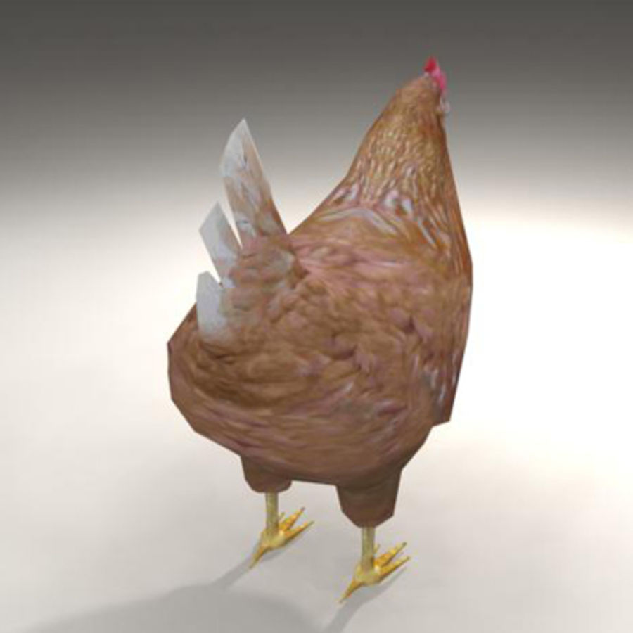 Chicken royalty-free 3d model - Preview no. 5