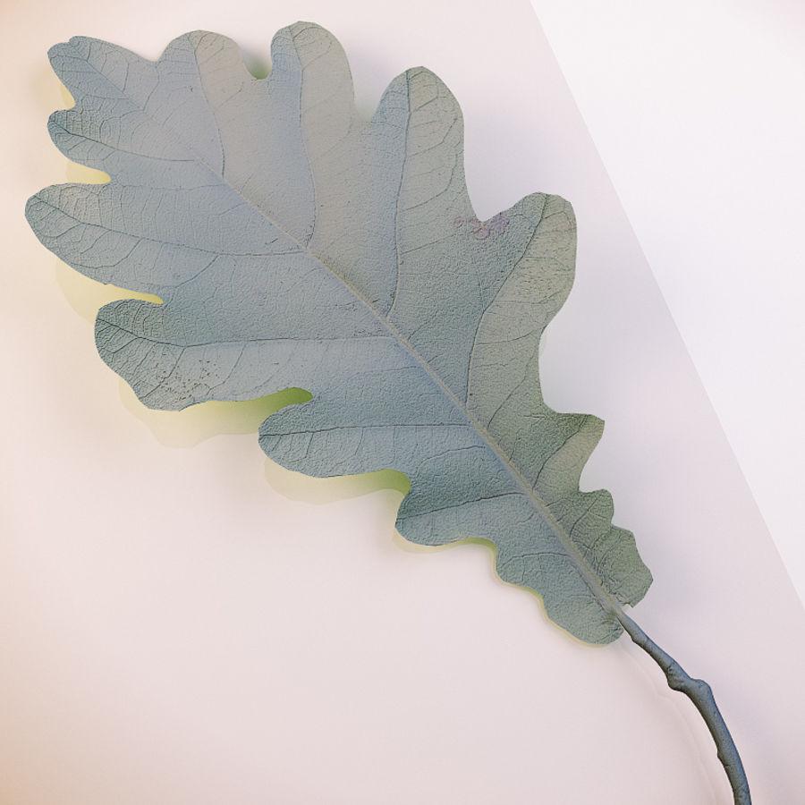 Autumn leaf oak royalty-free 3d model - Preview no. 7