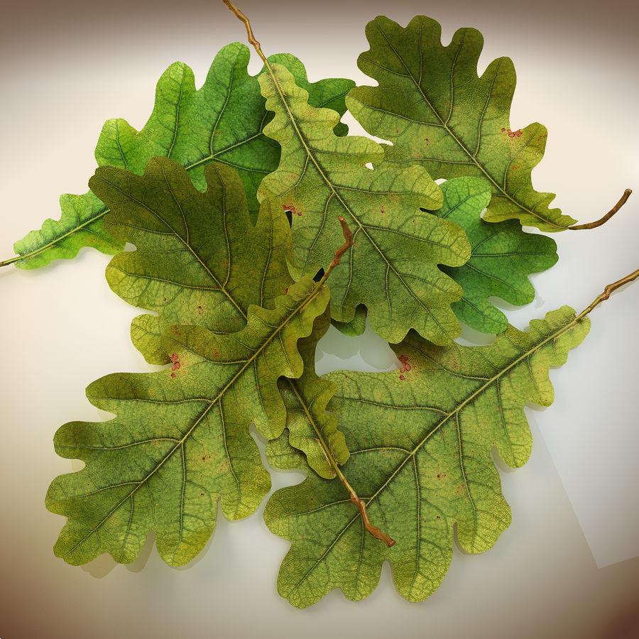 Autumn leaf oak royalty-free 3d model - Preview no. 6