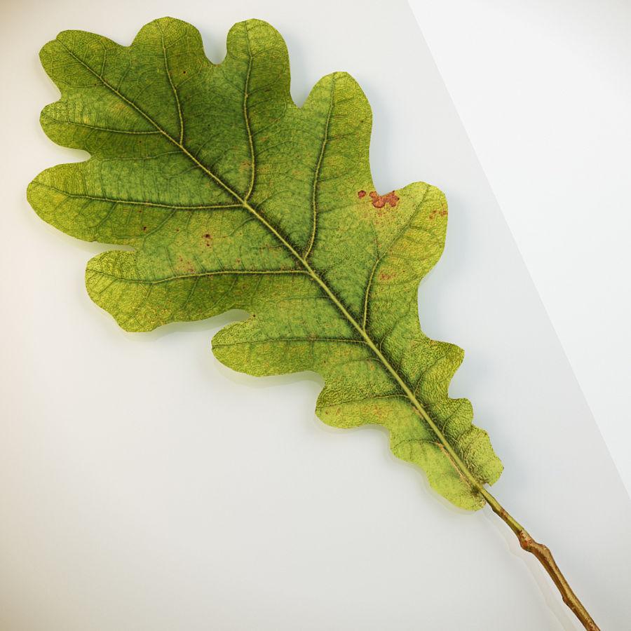 Autumn leaf oak royalty-free 3d model - Preview no. 5