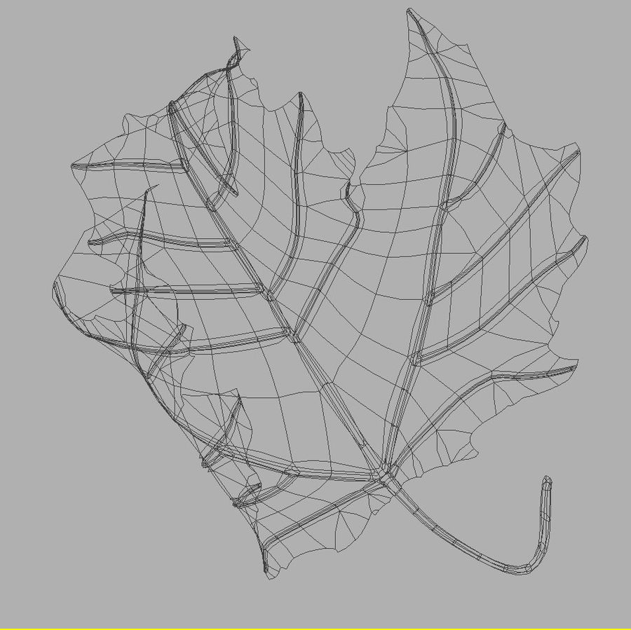 Autumn leaf poplar royalty-free 3d model - Preview no. 7