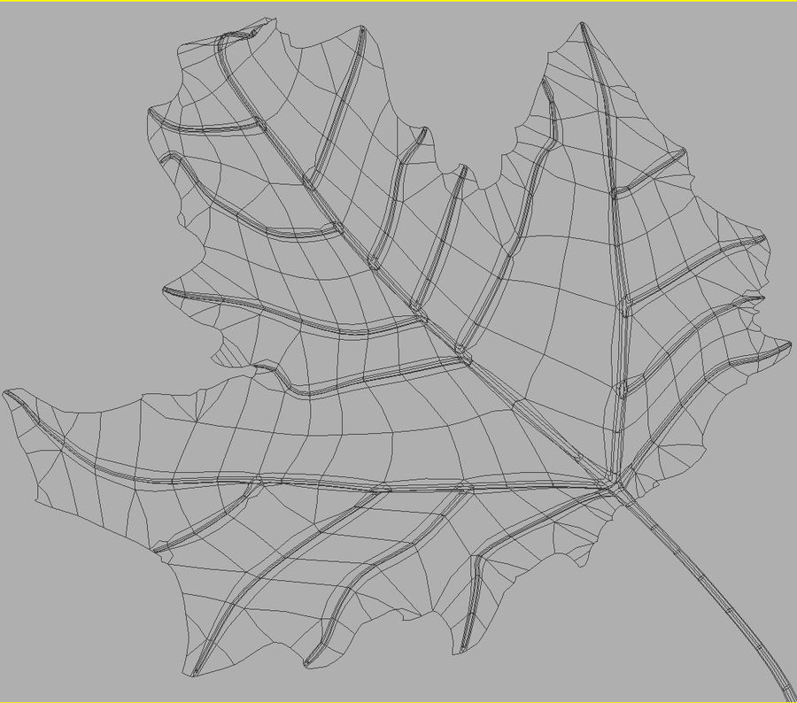 Autumn leaf poplar royalty-free 3d model - Preview no. 9