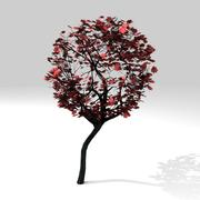 Round maple tree 3d model