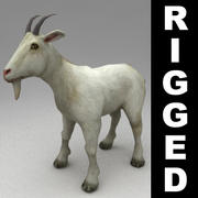 Goat rigged 3d model