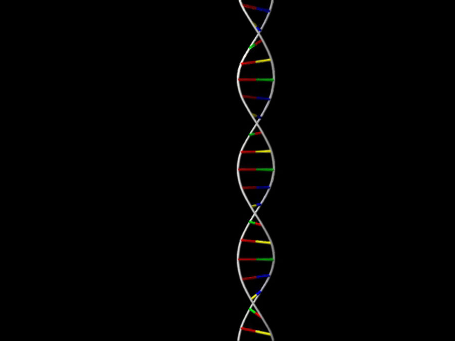 DNA strand royalty-free 3d model - Preview no. 3