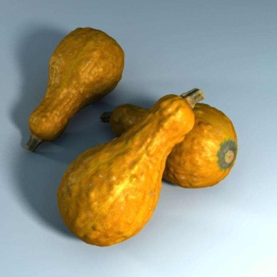 Gourd (High Res) royalty-free 3d model - Preview no. 2
